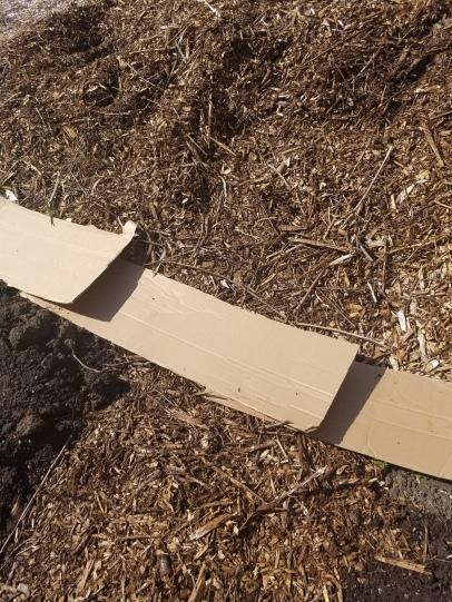 sheet mulching lesson 2