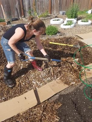 sheet mulching lesson 3